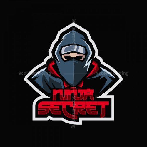 Ninja Secret