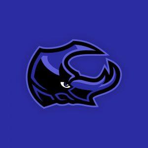 Beetle Mascot Logo