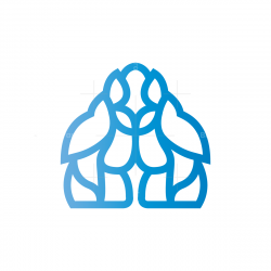 Complex Yeti Logo