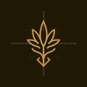 Dragon Cannabis Logo