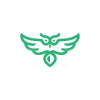Green Flying Owl Logo
