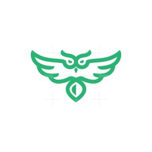 Green Flying Owl Logo Owl Logo