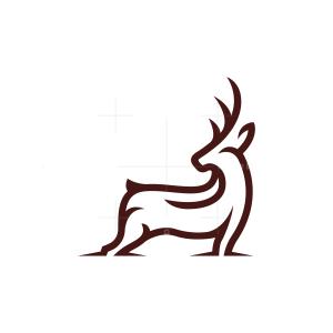 Ground Deer Logo Stag Logo