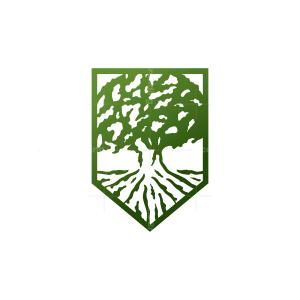 Shield Guardian Oak Tree Logo