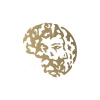 Wise Man Logo