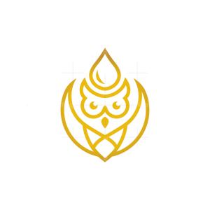 Extracts Golden Drop Owl Logo