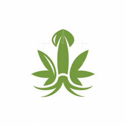 Squid Cannabis Logo