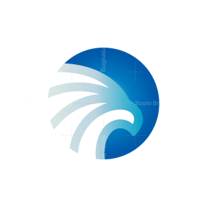 Eagle Head Logo Hawk Logo