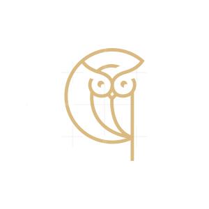 Circle Owl Logo Beautiful Owl Logo