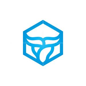 Hexagon Bull Logo