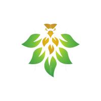 Nature Eagle Logo