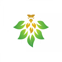 Nature Eagle Logo