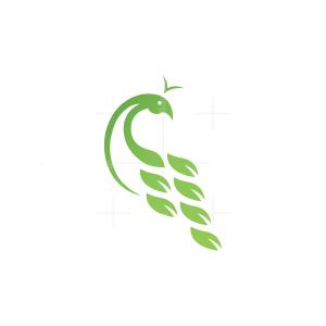 Nature Peacock Logo