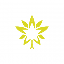 Star Cannabis Logo