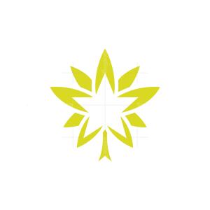 Star Cannabis Logo