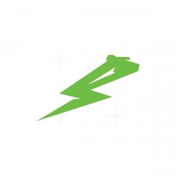 Thunder Bear Logo