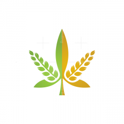 Wheat And Cannabis Logo