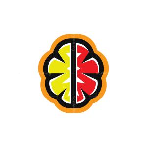 Colorful Human Brain Logo