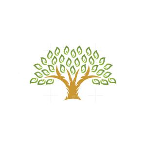 Gold And Green Tree Logo Tree Logo