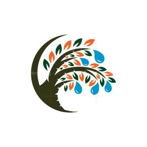 Water Drops Tree Logo Tree Logo