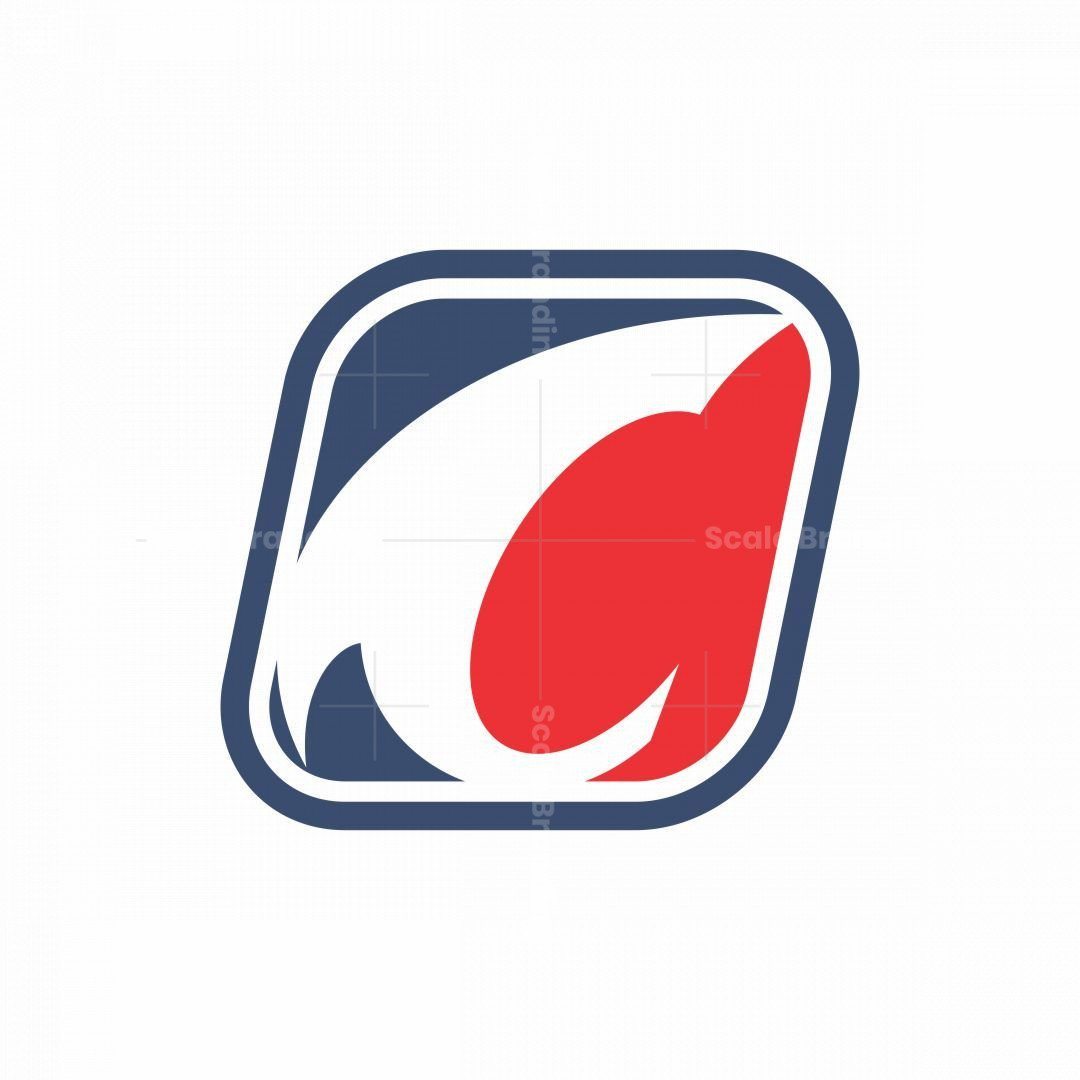 Stylish C Logo