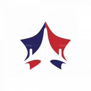 Star Air Force Logo