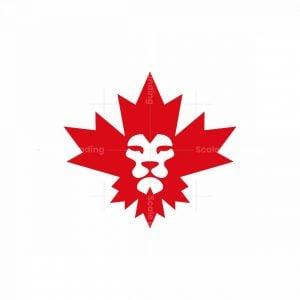 Maple-king