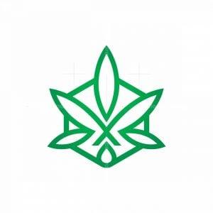 X Hemp Logo Cbd Logo