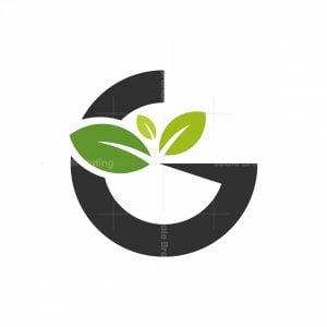 Green G Letter Leaves Logo