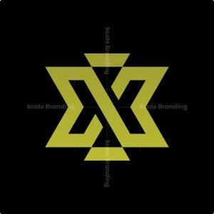 Luxury Letter X Logo