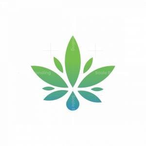 Waterdrop Cannabis Logo