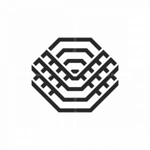 Abstract Spider Web Logo