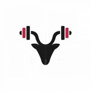 Deer Gym Logo