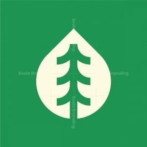 Drop Forest Logo
