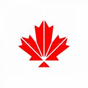 Modern Maple Logo