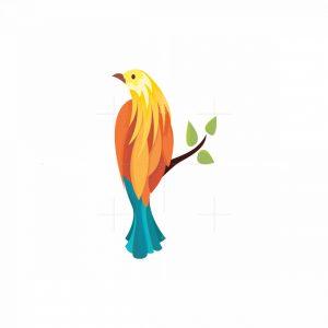 Colourful Bird Logo