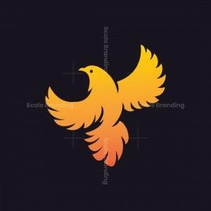 Orange Phoenix Bird Logo