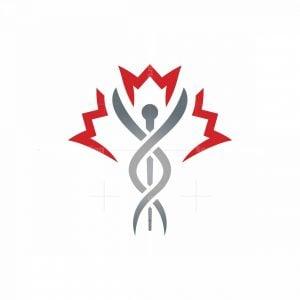 Canada Maple Leaf Medical Logo