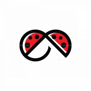 E Ladybug Logo