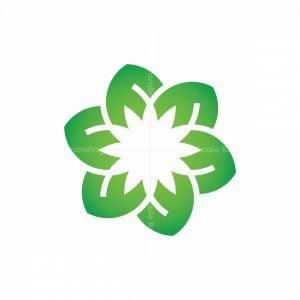 Letter F Flower Logo