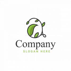 Aa And Leaf Logo