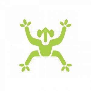Modern Frog Logo