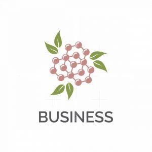 Natural Organic Formula Symbol Logo