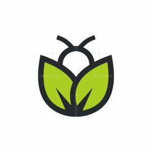 Organic Bee Logo