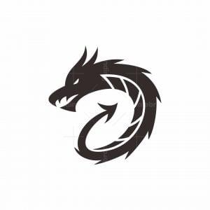 D Dragon Logo