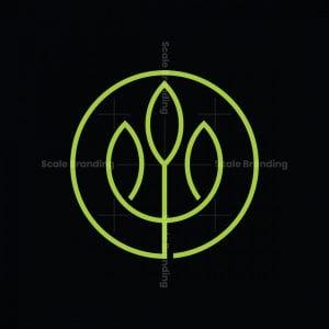 Modern Trident Leaf Logo
