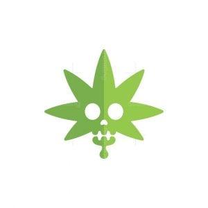 Skull Cannabis Logo