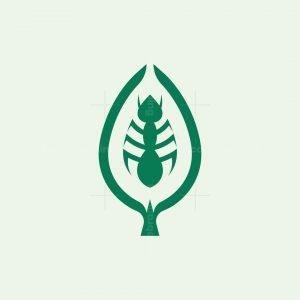 Leaf Ant Logo