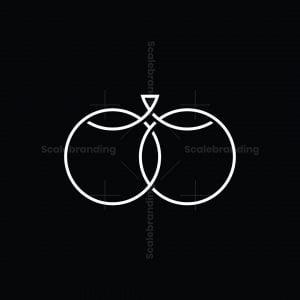 Dragonfly Infinity Logo