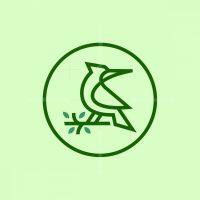 Geometric Line Art Woodpecker Logo